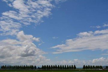 <p>Когда путешествуешь автостопом, очень много времени вдоволь полюбоваться окружающими пейзажами.</p>