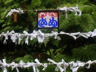 Yakushiike Kôen : toujours près du sanctuaire