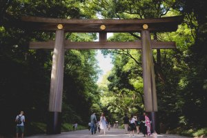 Entrance gate to Meiji Jingu Shrine
