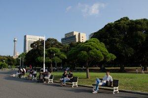 Bersantai di taman sambil membaca buku favorit atau menikmati camilan ringan?