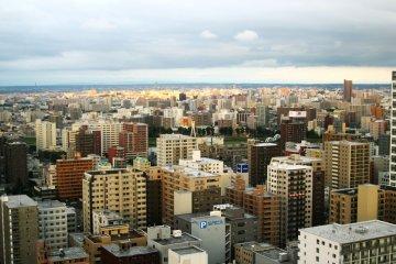 <p>The cityscape</p>