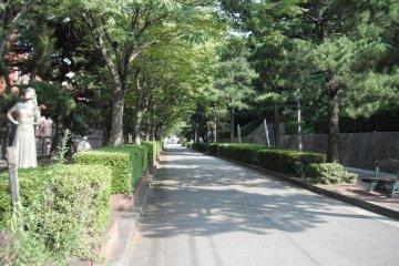 Avenue to the Art Museum, Kure
