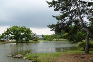 Landscape near Hiraizumi