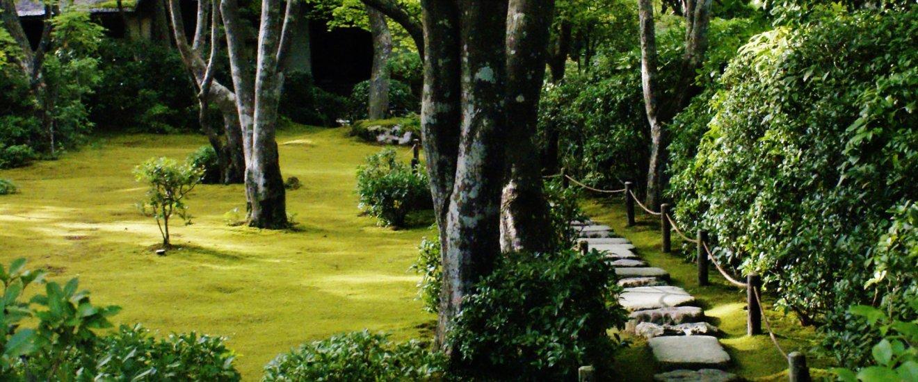 L'intérieur du parc en allant vers l'ancienne maison de thé de l'acteur
