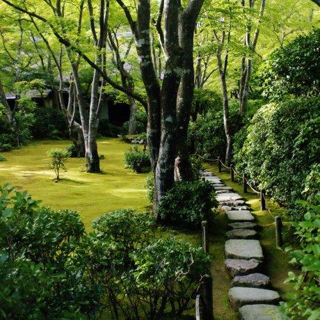 Le Jardin Okochi Sansô