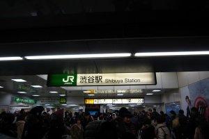 ป้ายชื่อสถานี ชิบูย่า ตรงทางออกฝั่งที่ฮาจิโกะจ้องมอง