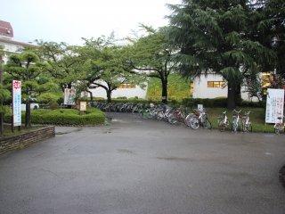 Велосипеды в прокат