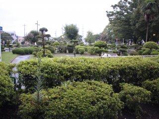 Общий вид на парк