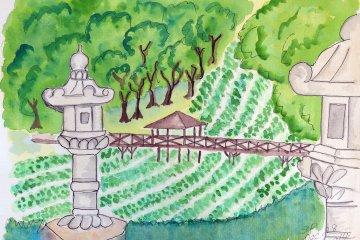 <p>ฟาร์มวาซาบิ ไดโอะ ฟาร์มวาซาบิที่ใหญ่ที่สุดในญี่ปุ่น ฟาร์มยาวเยียดเลียบแม่น้ำดูคล้ายนาข้าว</p>