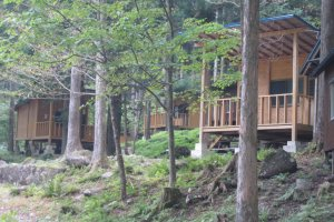 The cabins for rent