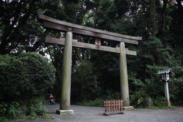 <p>Ворота полностью деревянные</p>