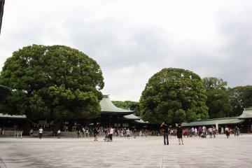 <p>На территории храма также растут красивые деревья</p>