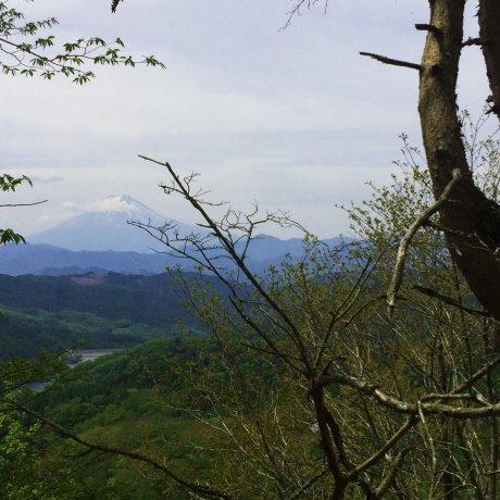 ภูเขาไดโบะซัตซึตในยะมะนะชิ