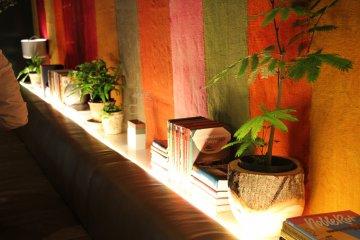 <p>Вдоль стены стоят растения и расположены книги</p>