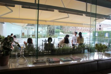<p>Вид на террасу из внутренней части ресторана</p>