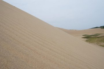 The sandy slopes are quite steep and take some effort to climb