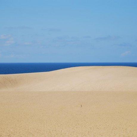 More of Tottori Sand Dunes
