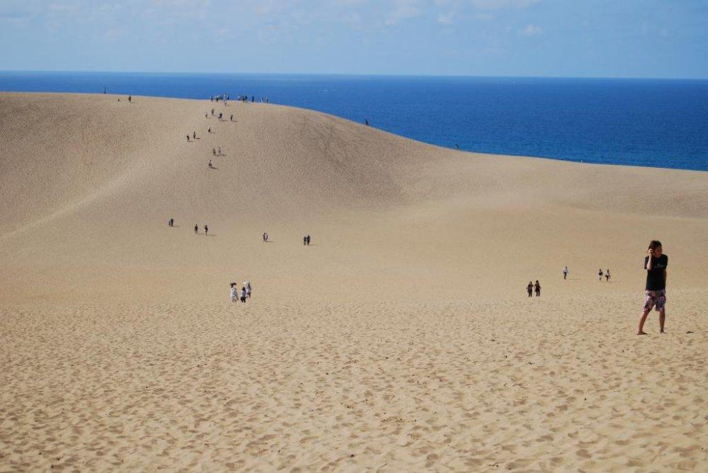 Membuat perjalananmu menyeberang bukit pasir jadi lumayan sulit.