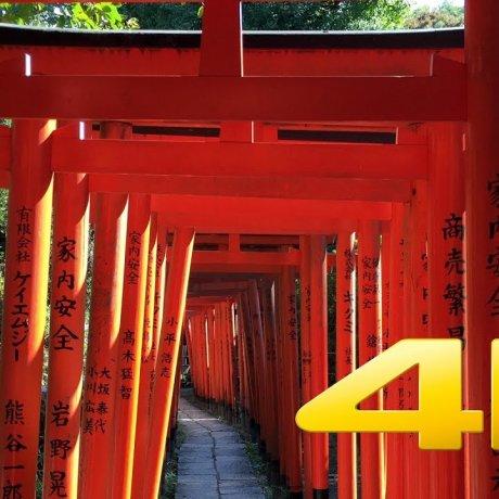 The Nezu-jinja Shrine