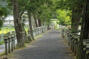 <p>The stone lantern-lined path of Mii Shrine</p>