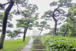 تل شين هينكوشي ياما