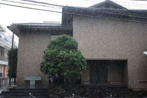 Фронтальный вид здания музея