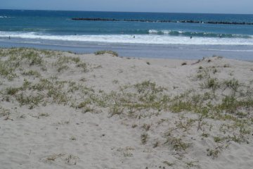 Bãi biển Susuki
