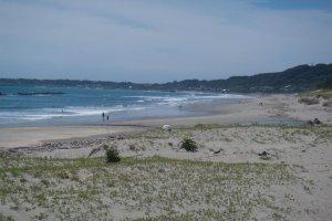 Bãi biển rộng đầy cát