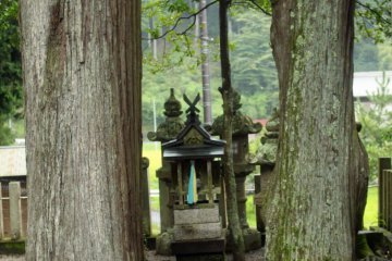 <p>A small shrine altar between two enormous cedar trees</p>