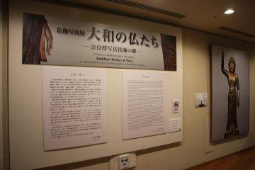<p>Выставка фотографий Будды глазами фотографов</p>