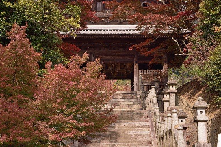 Cảnh sắc mùa thu ở đền Hashikura
