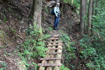 <p>A log bride over a small stream bed on the Suigen no Mori Hiking Trail</p>