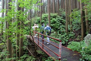 The trail to the summit of Mt. Omine is, with the exception of the Tests of Courage, a gentle and easy hike