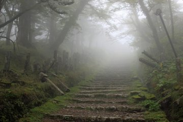<p>The final stairs to the main hall, it actually was a temple in and above the clouds on my visit</p>