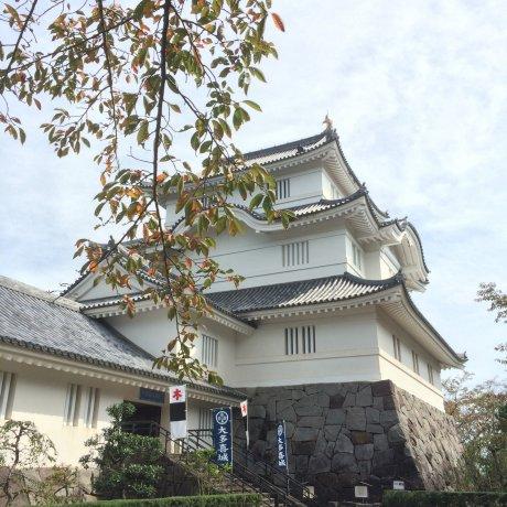 Ōtaki Castle