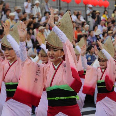 Lễ hội Awa Odori, thành phố Tokushima