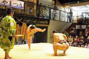 Pegulat sumo (atau dikenal dengan deshi di Jepang), mengambil ancang-ancang sebelum memulai pertunjukan