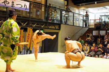 <p>The sumo wrestlers (or deshi in Japanese), square off before the start of the show</p>