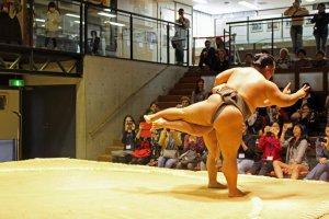 Sebuah gerakan dalam sumo berubah menjadi dansa waltz dan kemudian mengarahkan gerakan ini ke penonton