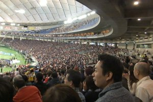 2015 Rice Bowl Tokyo Dome Crowd