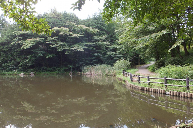 Taman Anak Hodogaya