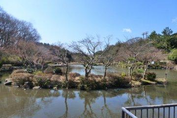 <p>Kamishirane Oike Park</p>