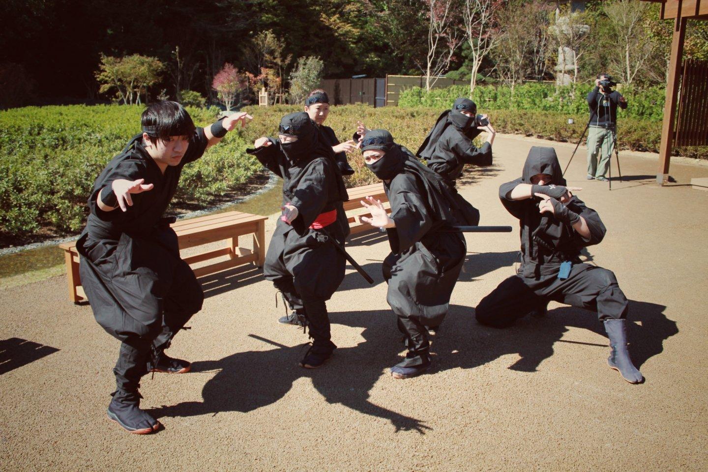 Penampilan ninja