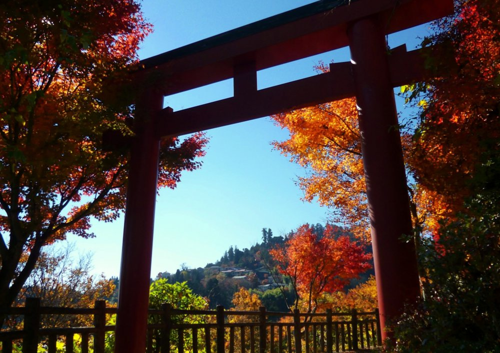 A large torii gate welcomes visitors to the village of Mitake.
