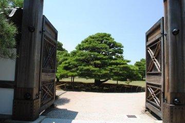 Entrance to the Japanese garden outside the Ninomaru Palace