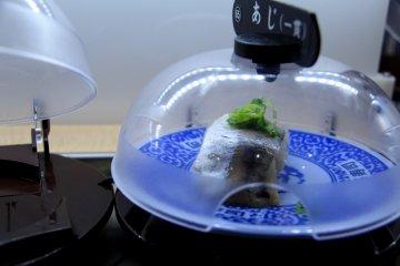 <p>Some sushi waiting to be chosen</p>