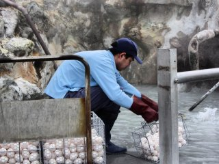Workers constantly add fresh eggs to the sulfuric water. Crate upon crate are dipped in the hot springs.