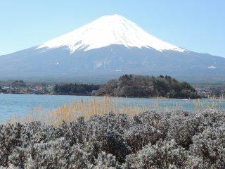 Fuji-San vu du lac Kawaguchi