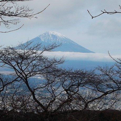 Menemukan Kembali Hakone