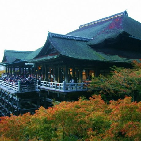 วัดคิโยมิสึเดระ (清水寺 Kiyomizu-dera)